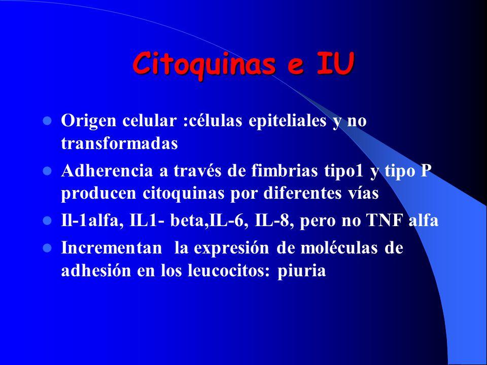 Citoquinas e IU Origen celular :células epiteliales y no transformadas