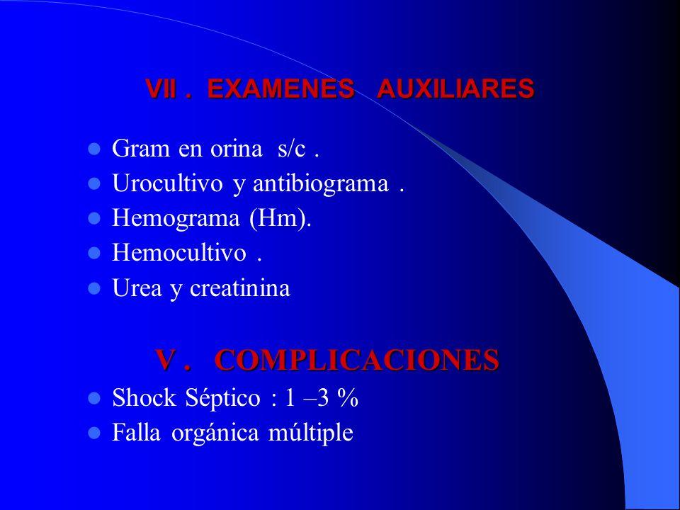VII . EXAMENES AUXILIARES