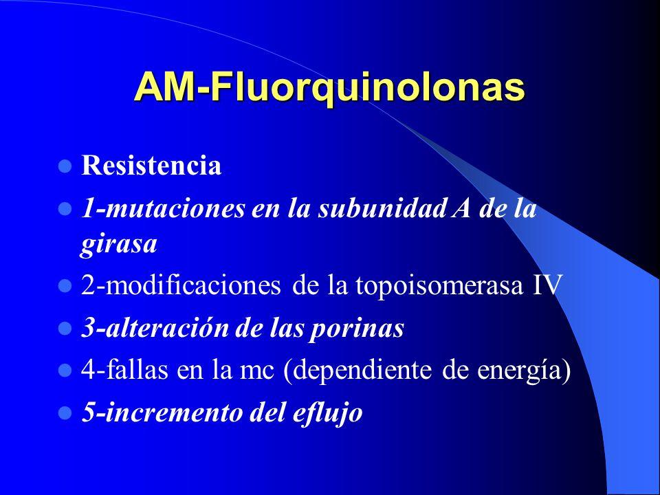 AM-Fluorquinolonas Resistencia