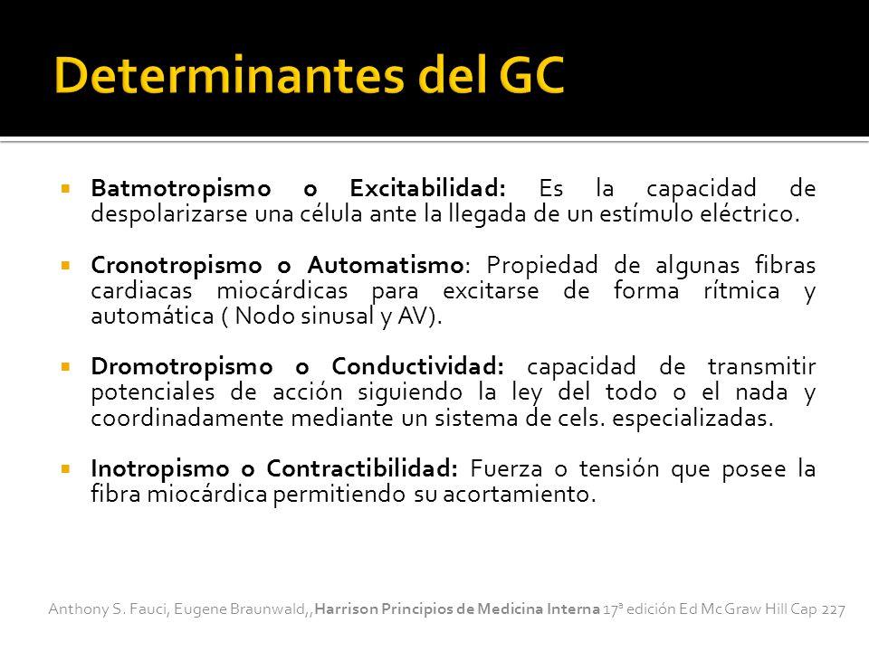 Determinantes del GC Batmotropismo o Excitabilidad: Es la capacidad de despolarizarse una célula ante la llegada de un estímulo eléctrico.