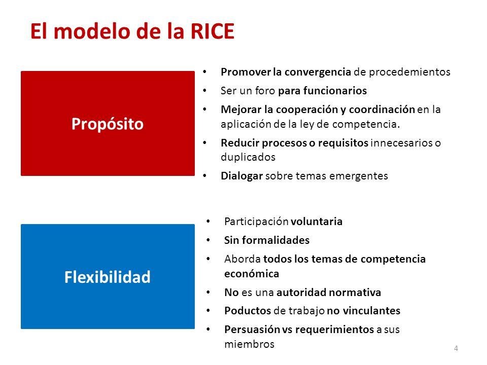 El modelo de la RICE Propósito Flexibilidad
