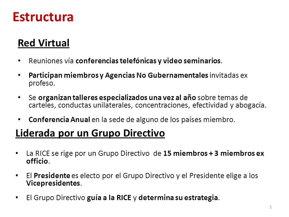 Estructura Red Virtual Liderada por un Grupo Directivo