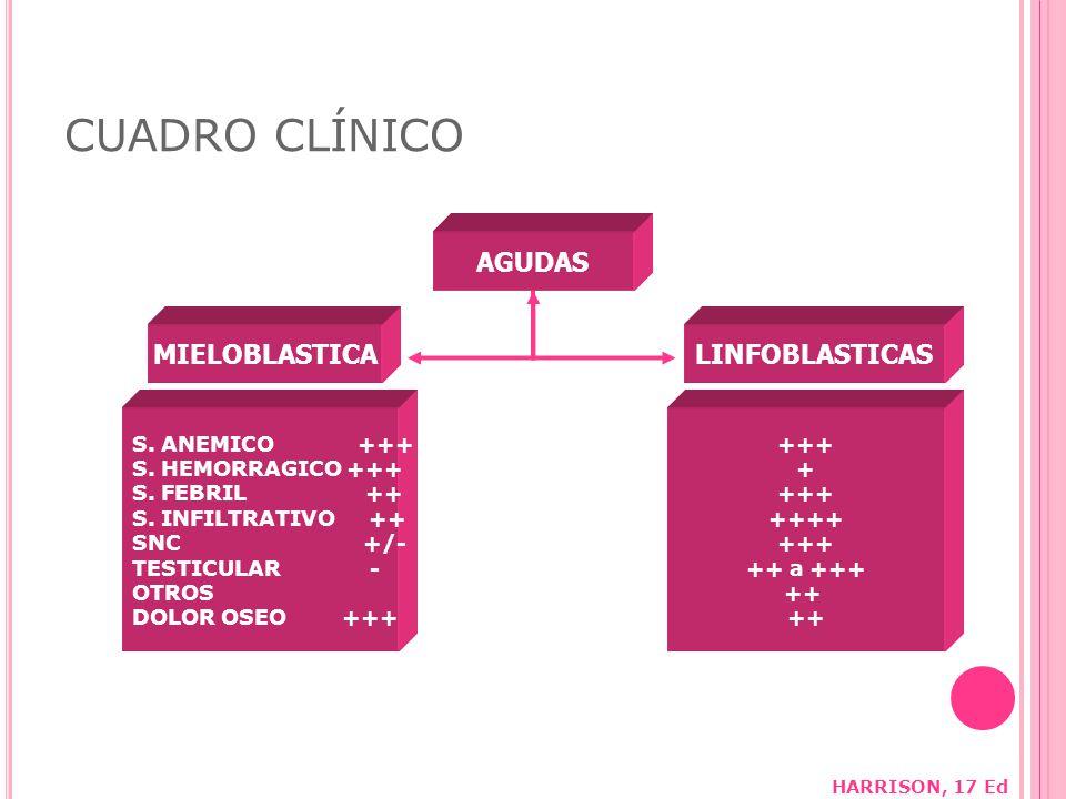 CUADRO CLÍNICO AGUDAS MIELOBLASTICA LINFOBLASTICAS S. ANEMICO +++