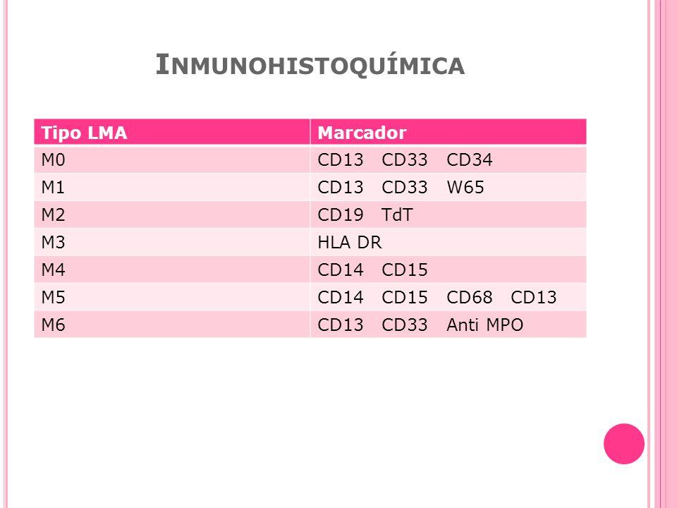 Inmunohistoquímica Tipo LMA Marcador M0 CD13 CD33 CD34 M1