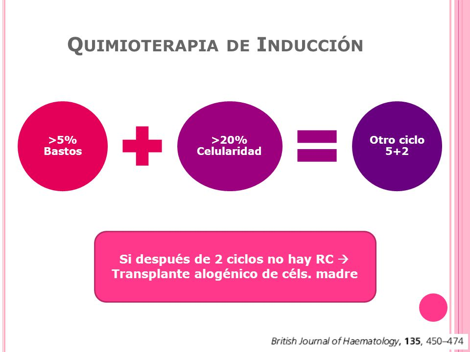 Quimioterapia de Inducción