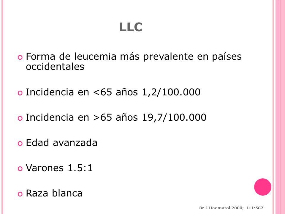 LLC Forma de leucemia más prevalente en países occidentales