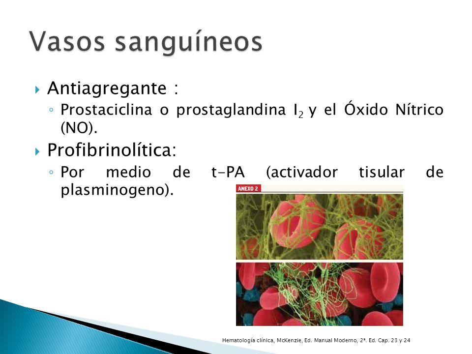 Vasos sanguíneos Antiagregante : Profibrinolítica: