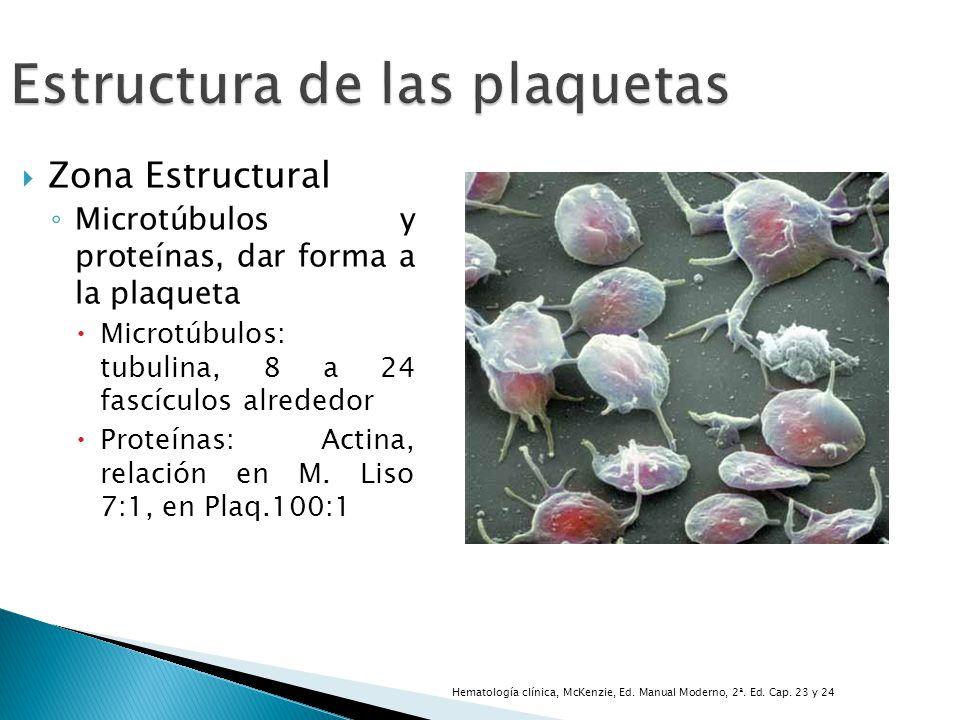 Estructura de las plaquetas