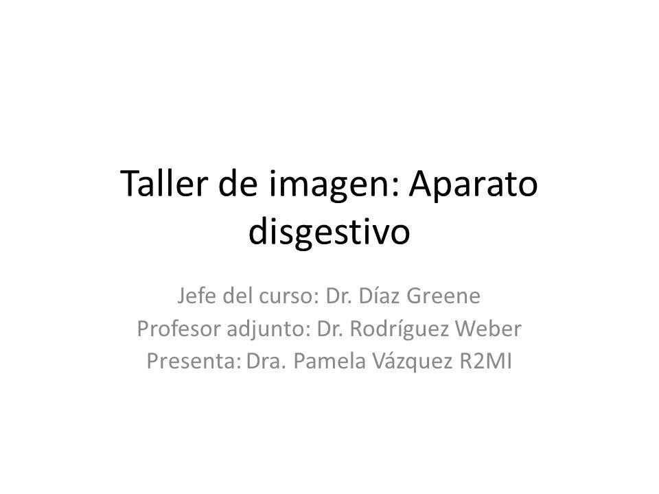 Taller de imagen: Aparato disgestivo