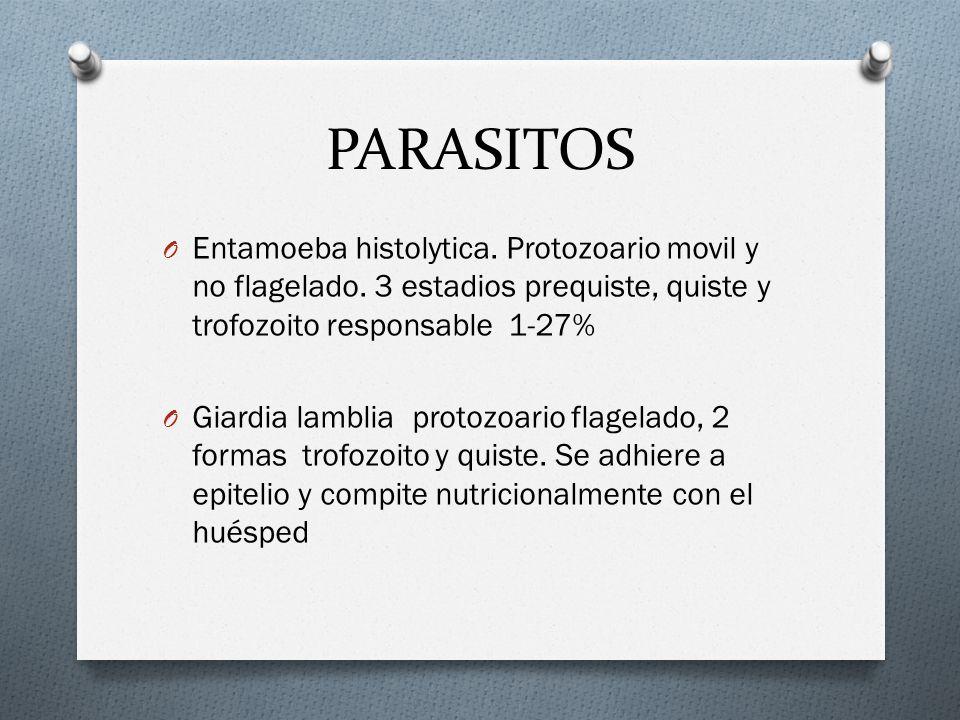 PARASITOS Entamoeba histolytica. Protozoario movil y no flagelado. 3 estadios prequiste, quiste y trofozoito responsable 1-27%