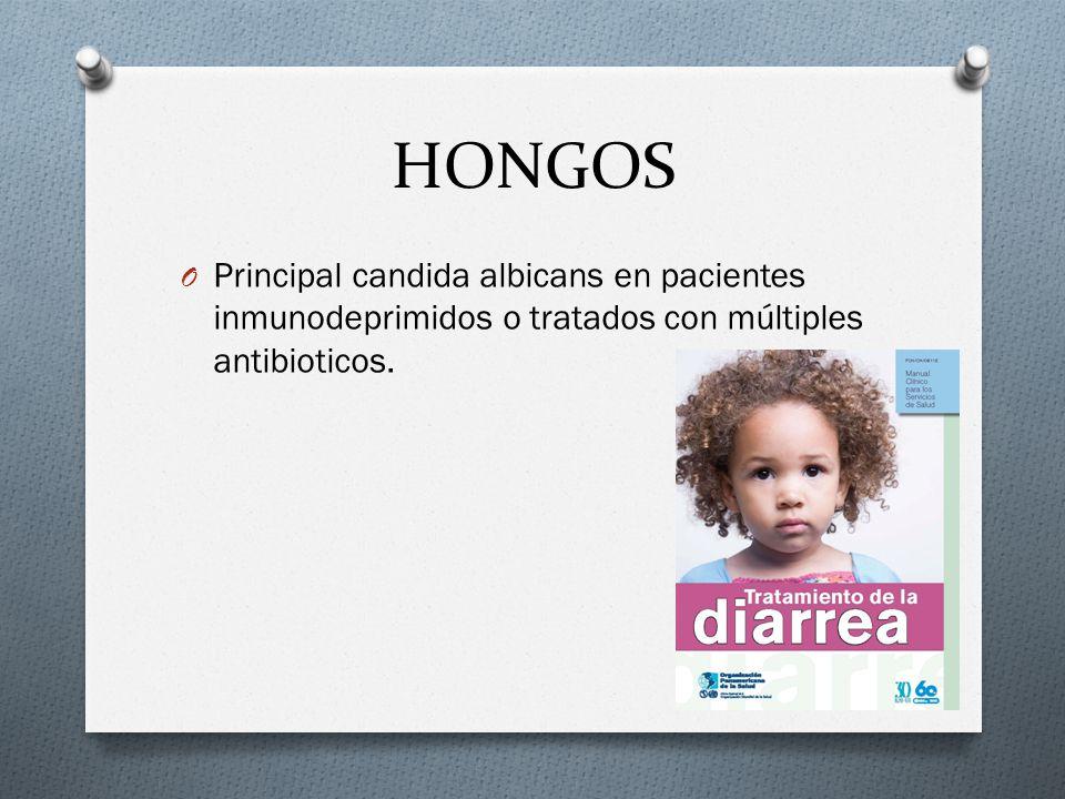 HONGOS Principal candida albicans en pacientes inmunodeprimidos o tratados con múltiples antibioticos.