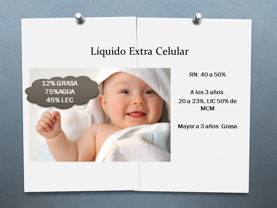 Líquido Extra Celular 12% GRASA 75%AGUA 45% LEC RN: 40 a 50%
