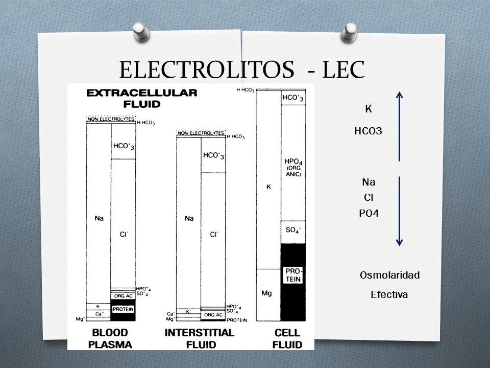 ELECTROLITOS - LEC K HCO3 Na Cl PO4 Osmolaridad Efectiva