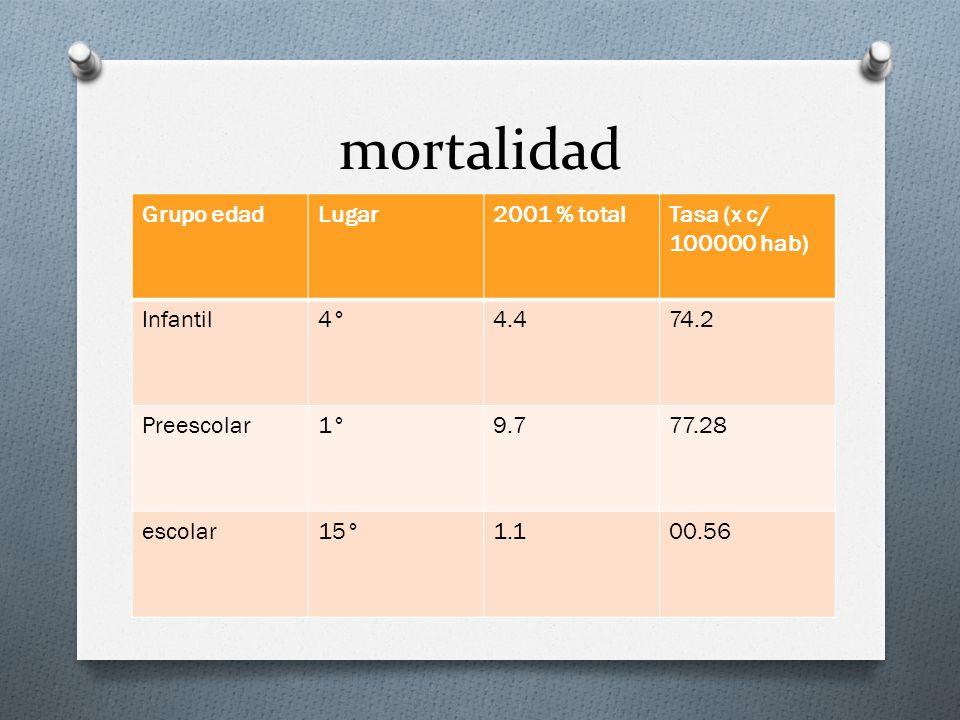 mortalidad Grupo edad Lugar 2001 % total Tasa (x c/ 100000 hab)