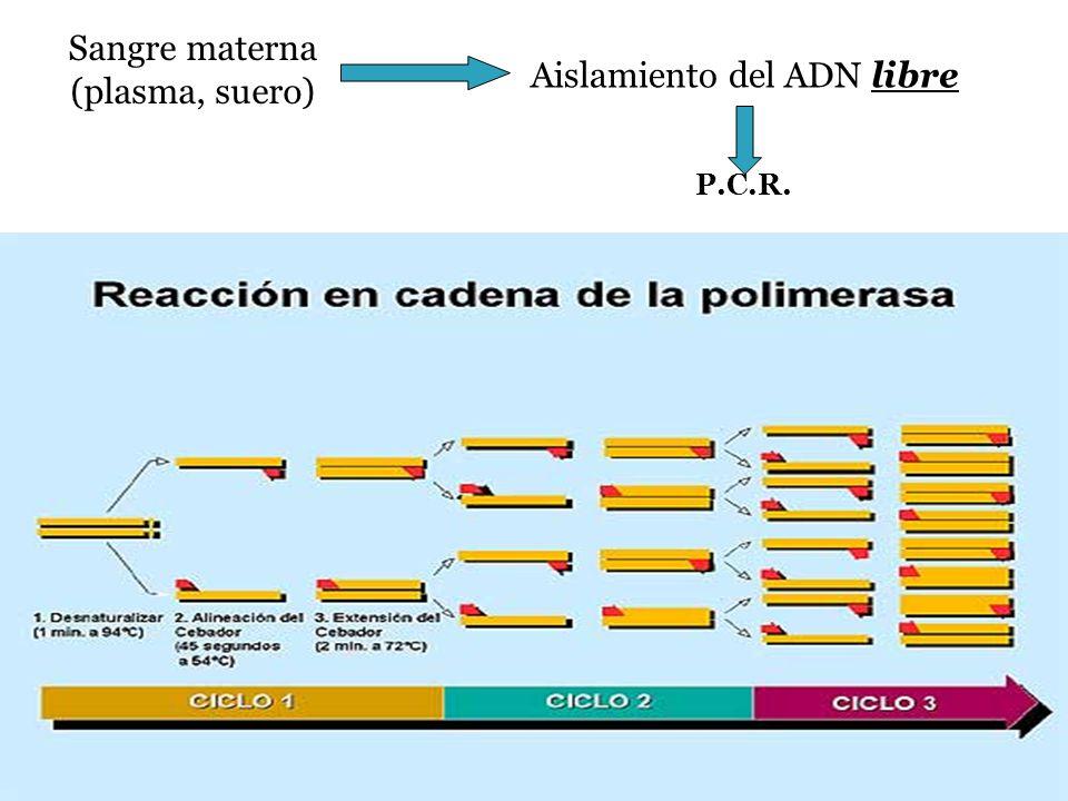 Aislamiento del ADN libre