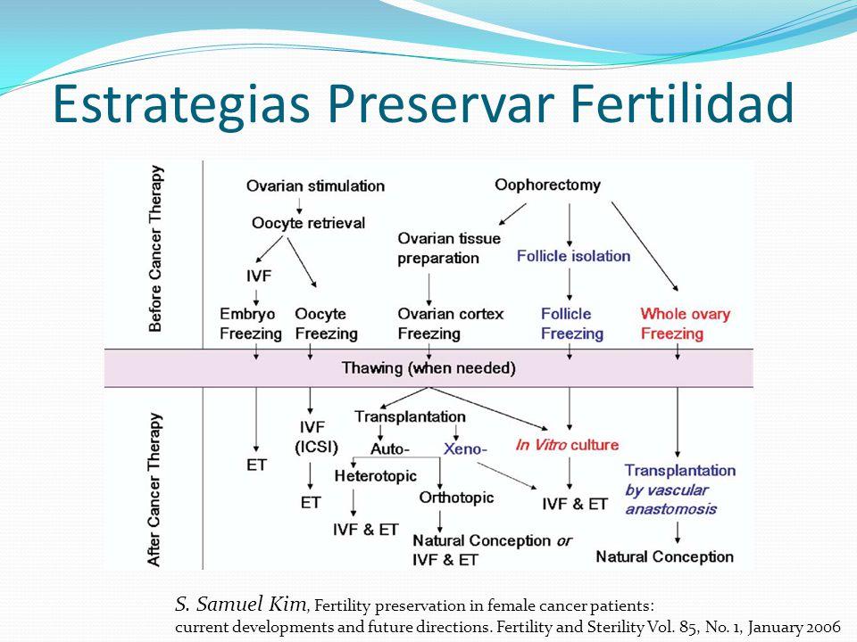 Estrategias Preservar Fertilidad