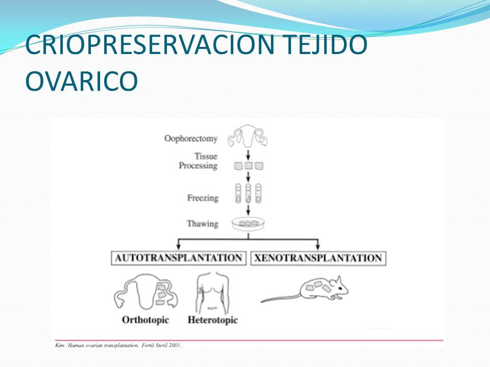 CRIOPRESERVACION TEJIDO OVARICO