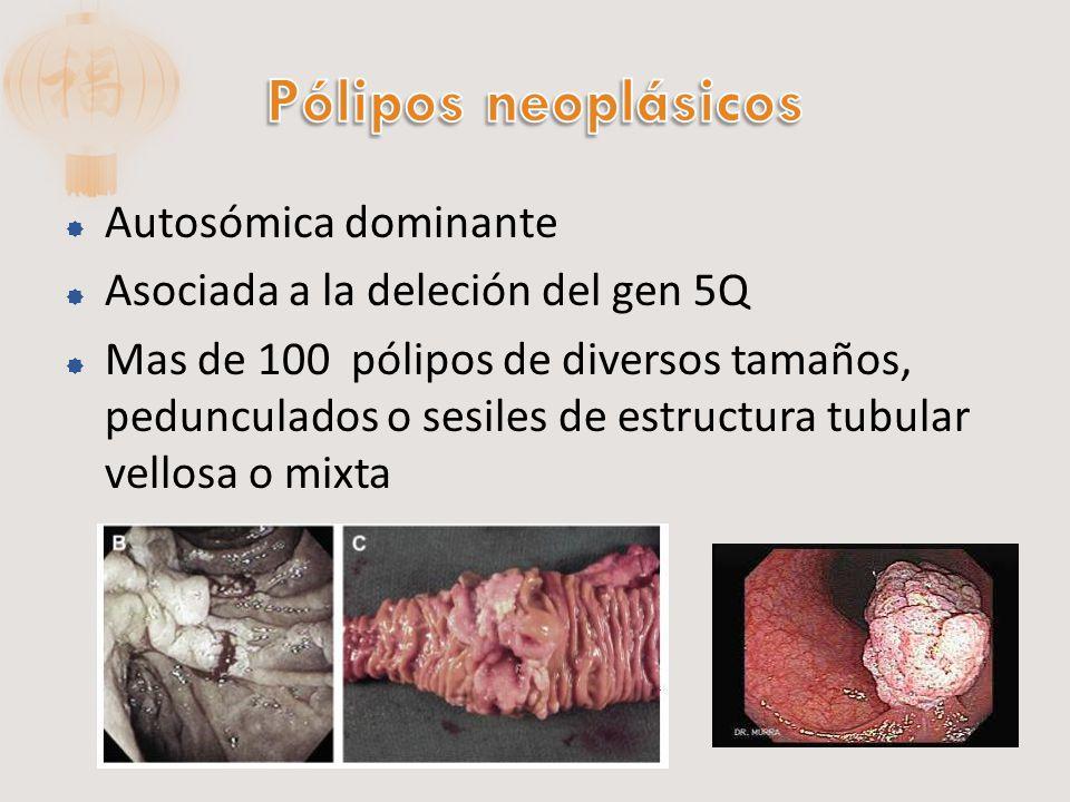 Pólipos neoplásicos Autosómica dominante