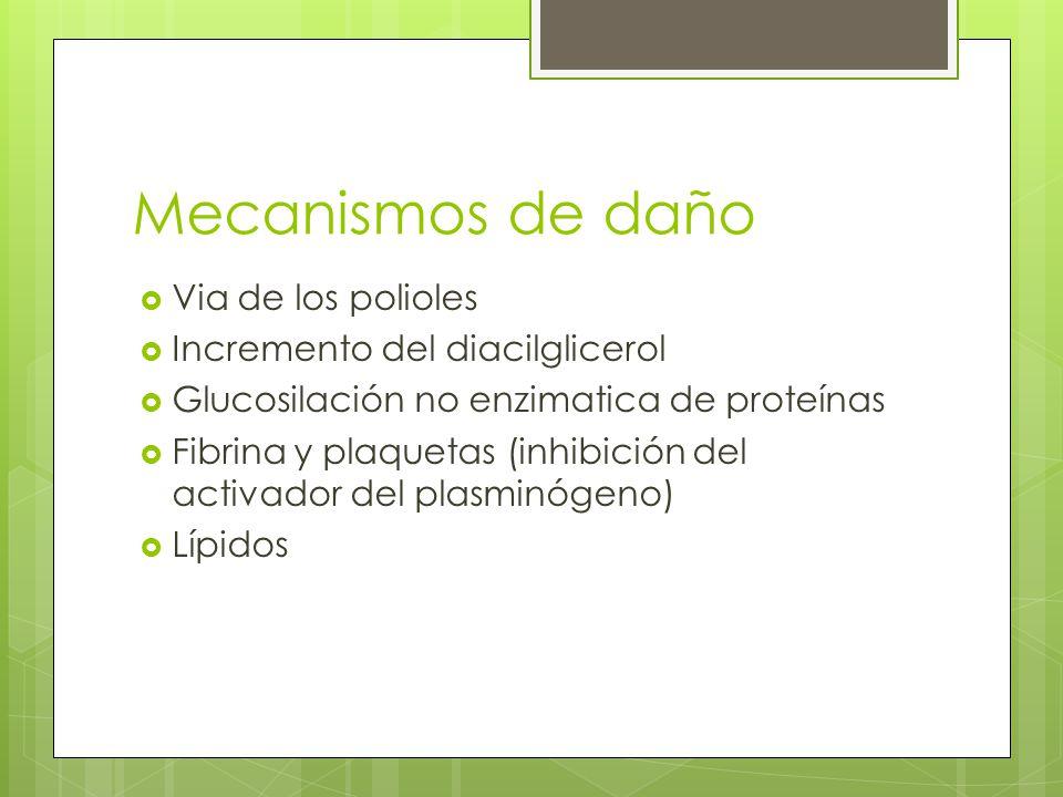Mecanismos de daño Via de los polioles Incremento del diacilglicerol