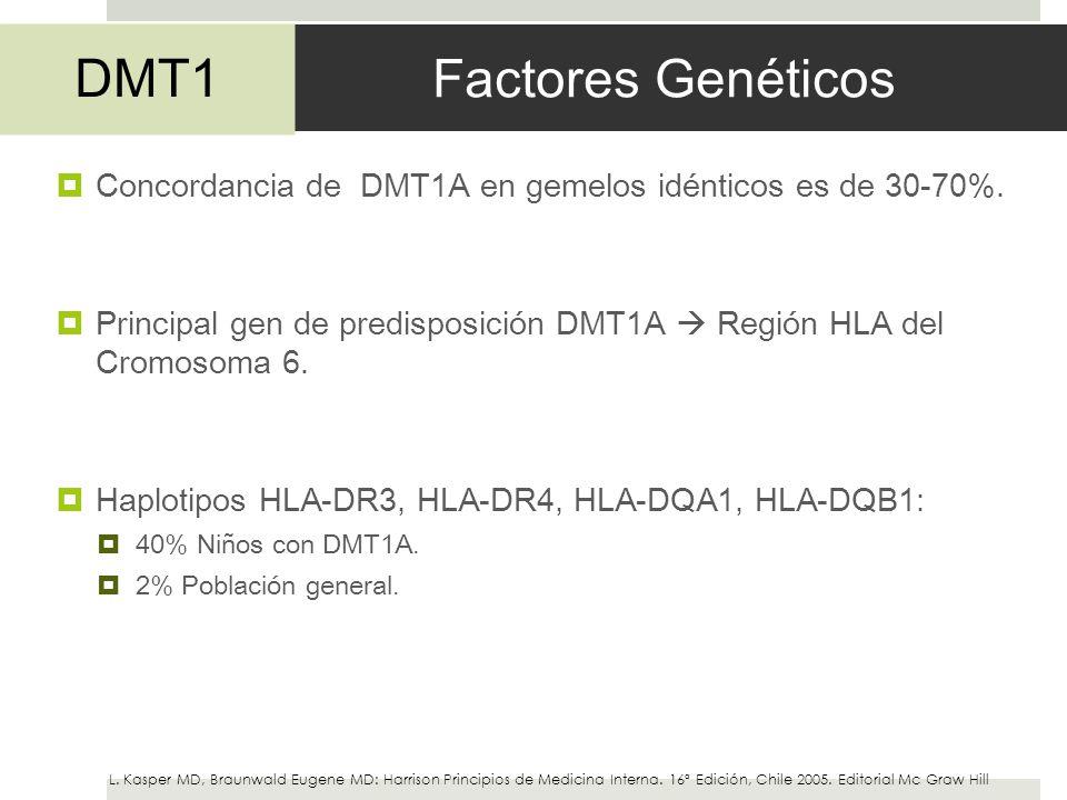 Factores Genéticos DMT1