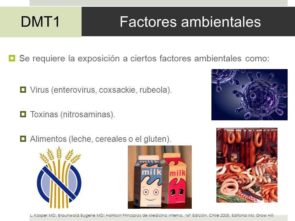 Factores ambientales DMT1