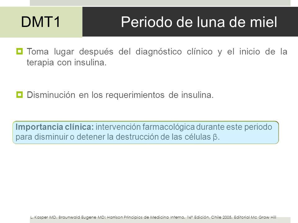 Periodo de luna de miel DMT1