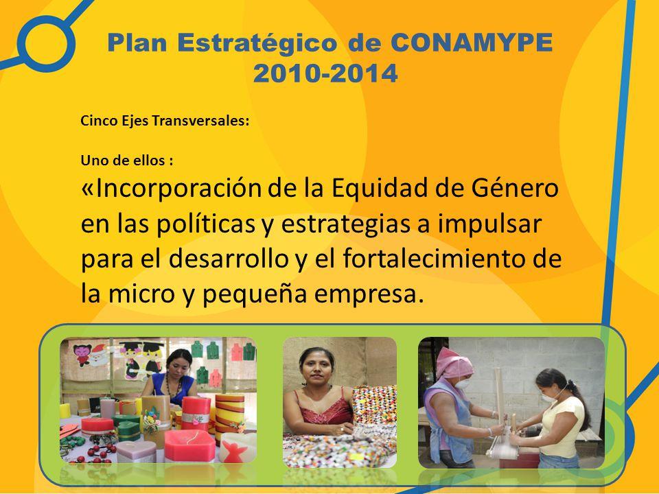 Plan Estratégico de CONAMYPE 2010-2014
