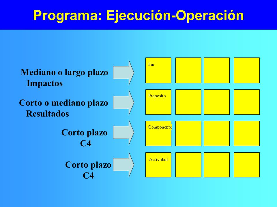 Programa: Ejecución-Operación
