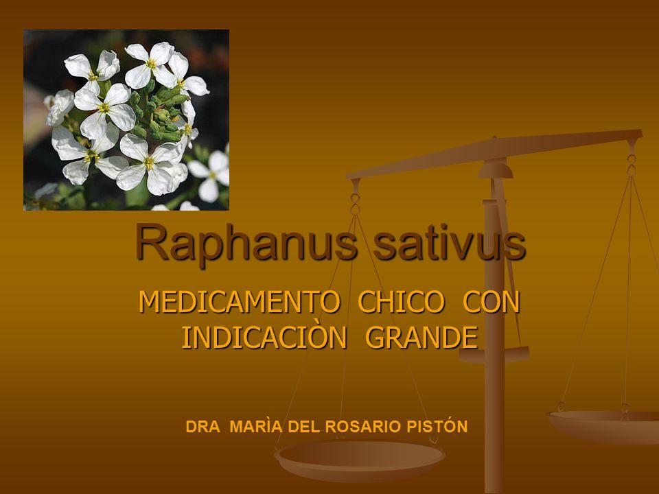 MEDICAMENTO CHICO CON INDICACIÒN GRANDE