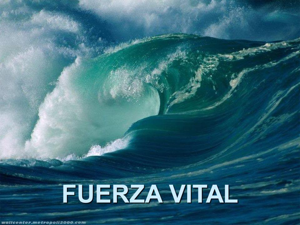 FUERZA VITAL
