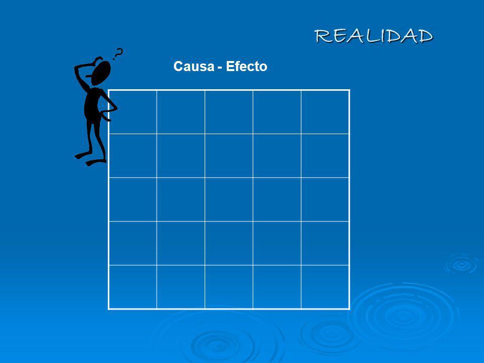 REALIDAD Causa - Efecto