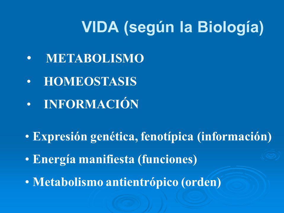 VIDA (según la Biología)