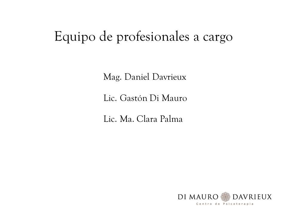 Equipo de profesionales a cargo