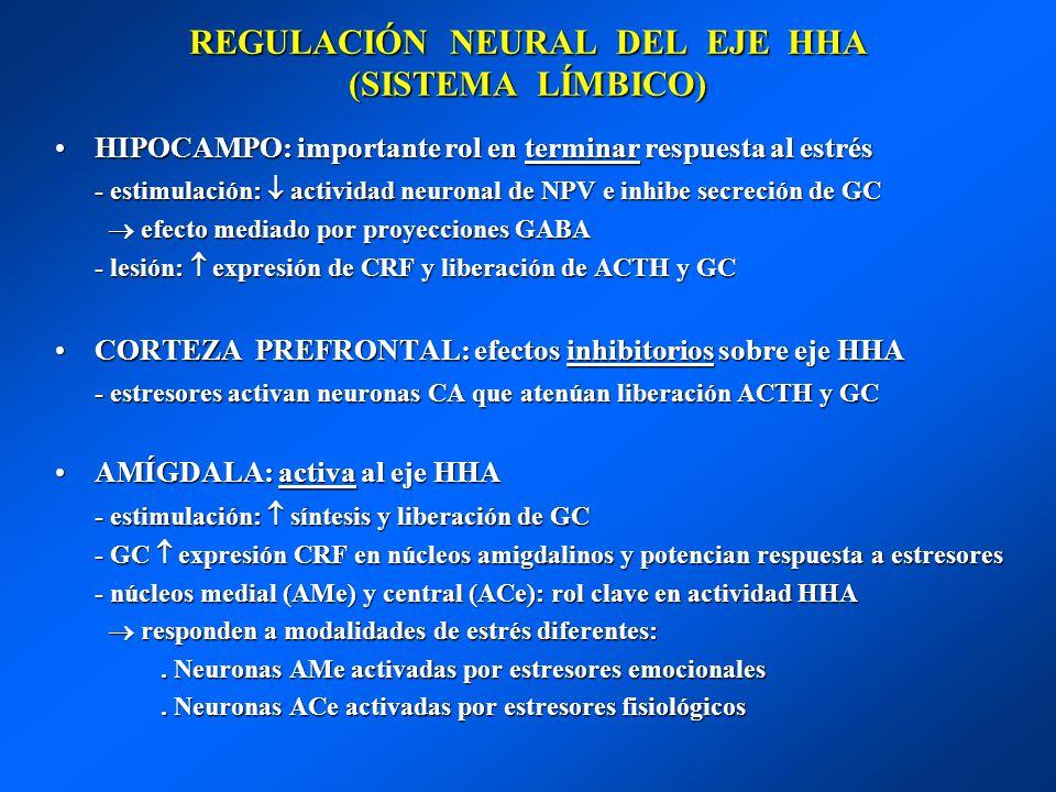 REGULACIÓN NEURAL DEL EJE HHA (SISTEMA LÍMBICO)