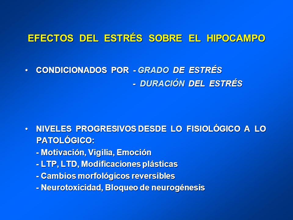EFECTOS DEL ESTRÉS SOBRE EL HIPOCAMPO