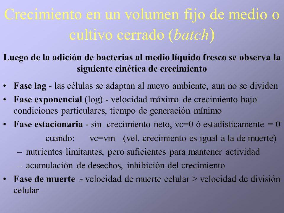 Crecimiento en un volumen fijo de medio o cultivo cerrado (batch)