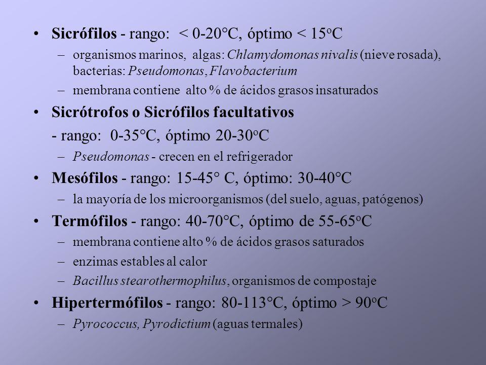 Sicrófilos - rango: < 0-20°C, óptimo < 15oC