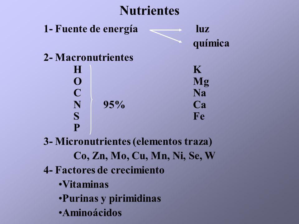 Nutrientes 1- Fuente de energía luz química 2- Macronutrientes H K