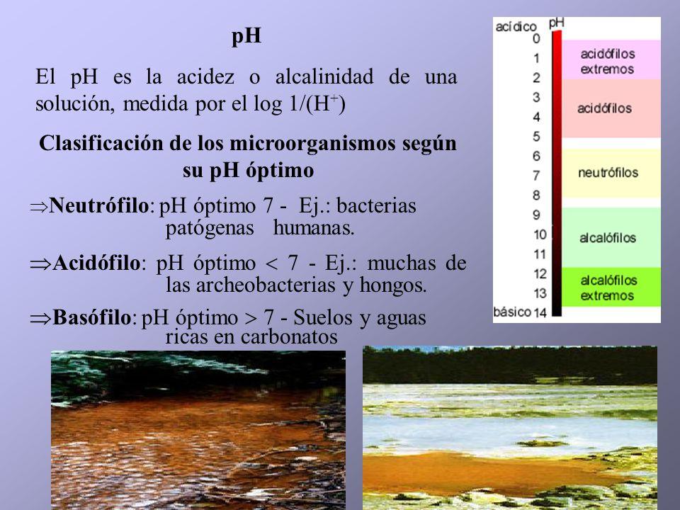 Clasificación de los microorganismos según su pH óptimo