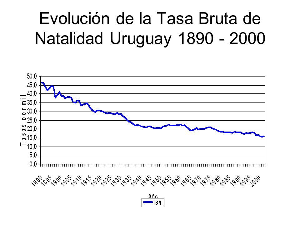 Evolución de la Tasa Bruta de Natalidad Uruguay 1890 - 2000