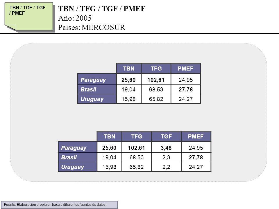 TBN / TFG / TGF / PMEF Año: 2005 Países: MERCOSUR TBN TFG PMEF