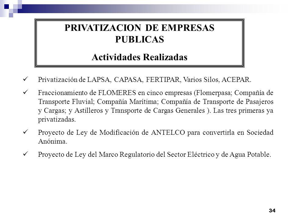PRIVATIZACION DE EMPRESAS PUBLICAS Actividades Realizadas
