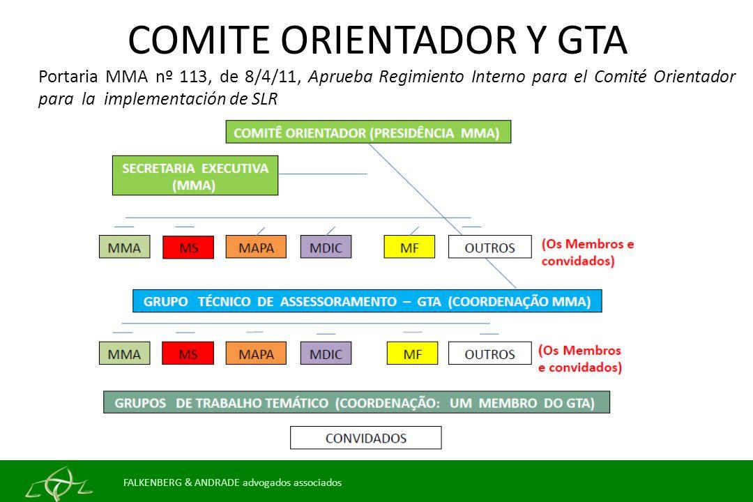COMITE ORIENTADOR Y GTA
