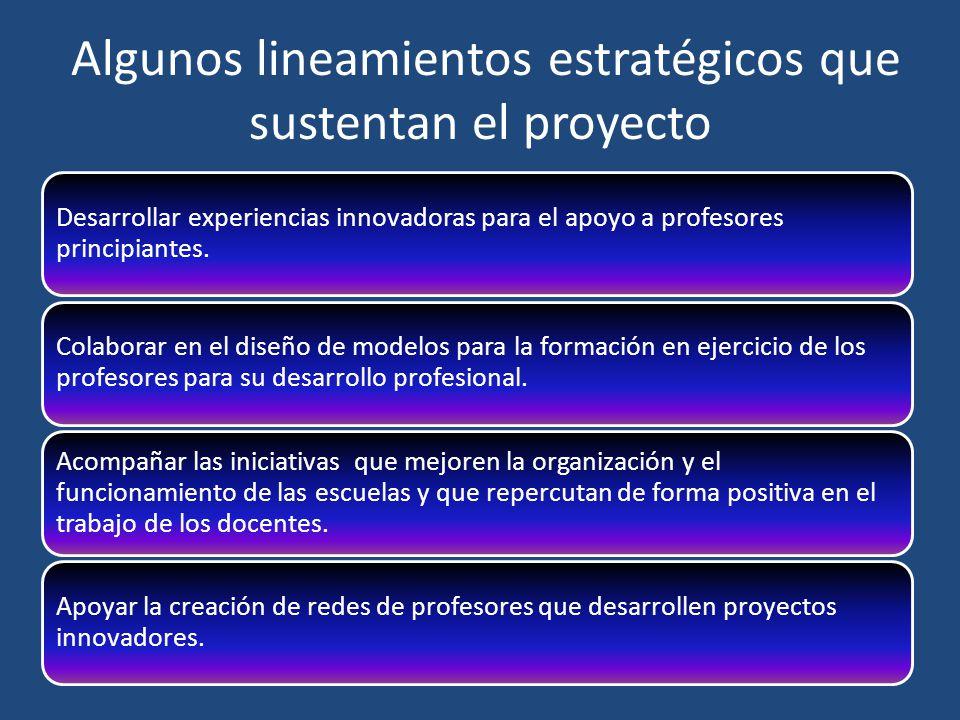 Algunos lineamientos estratégicos que sustentan el proyecto