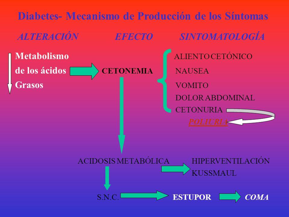 Diabetes- Mecanismo de Producción de los Síntomas
