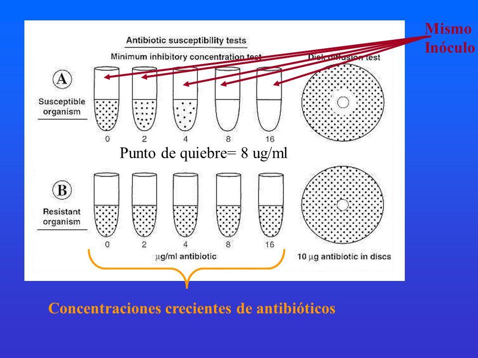 Mismo Inóculo Punto de quiebre= 8 ug/ml Concentraciones crecientes de antibióticos