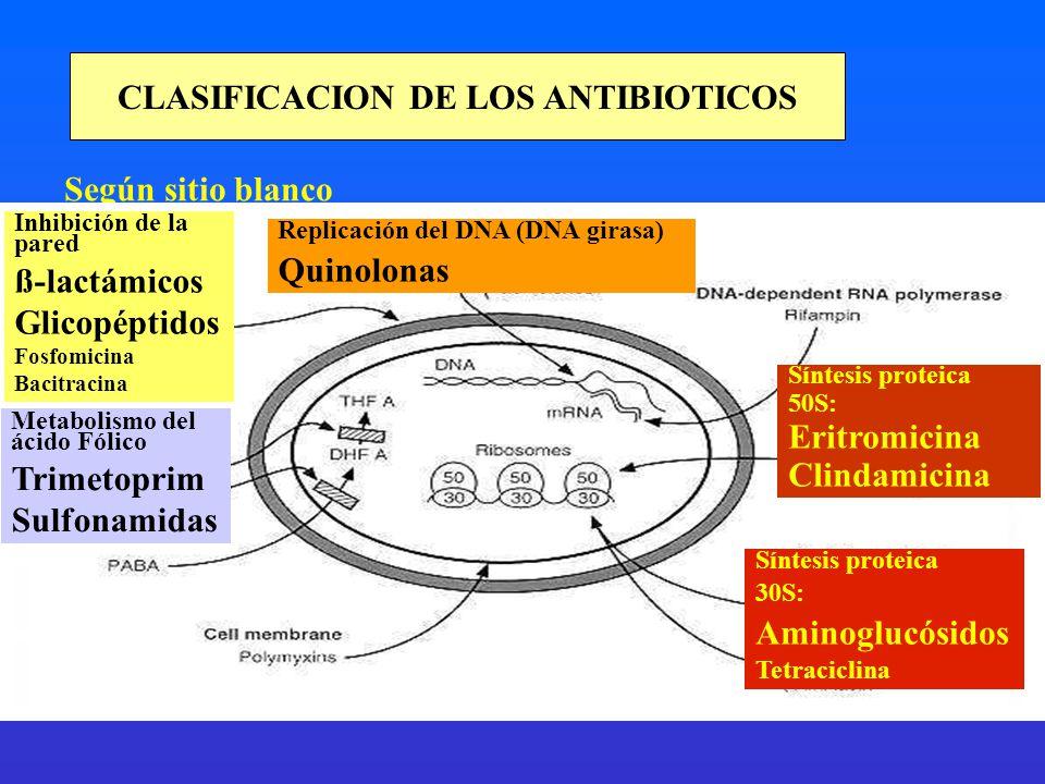 CLASIFICACION DE LOS ANTIBIOTICOS