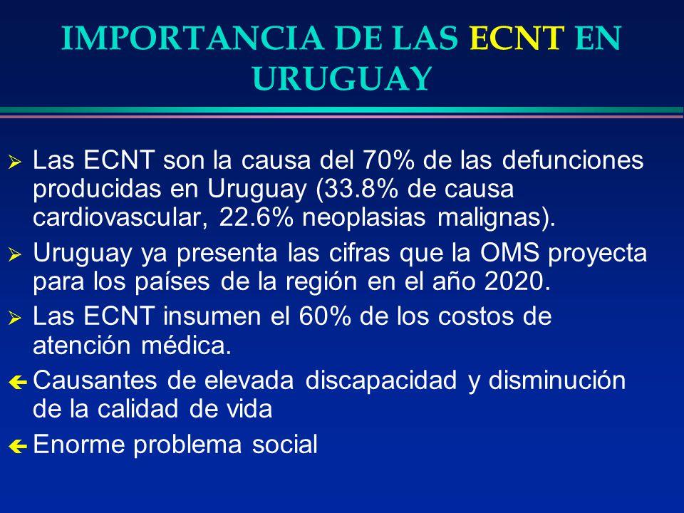 IMPORTANCIA DE LAS ECNT EN URUGUAY