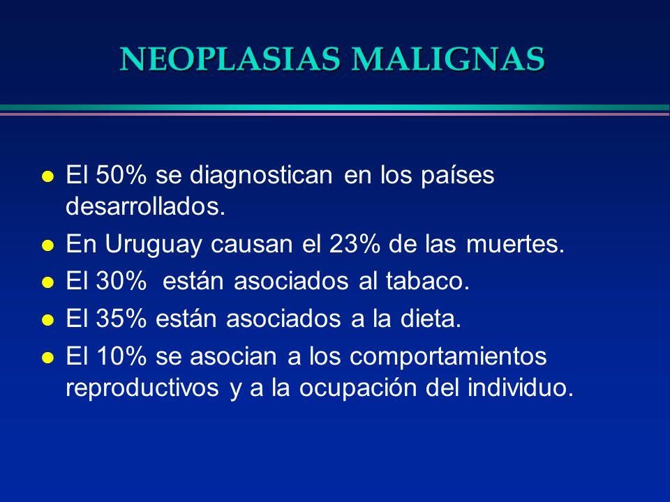NEOPLASIAS MALIGNAS El 50% se diagnostican en los países desarrollados. En Uruguay causan el 23% de las muertes.