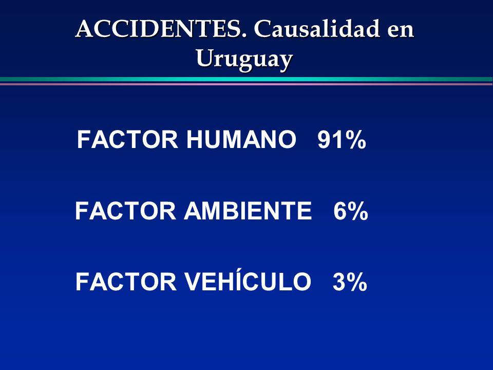 ACCIDENTES. Causalidad en Uruguay